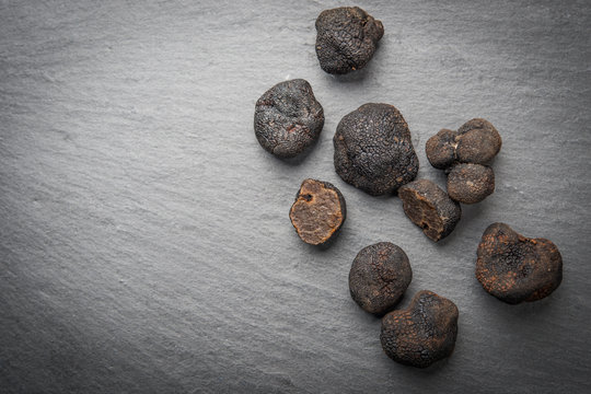 Black truffle mushrooms over rustic gray table and copy space