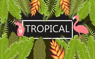 flamingo tropical banner