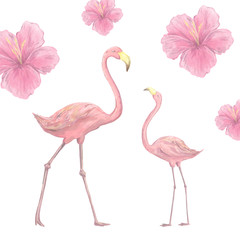 Pink flamingo character digital clip art cute two birds tropical summer set illusration on white background