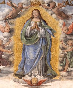 Madonna Assunta e angioletti; affresco di Bernardino Luini. Chiesa di San Maurizio, Milano