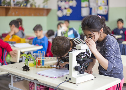 students are experimenting with microscopes