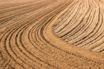 Plowed Field:  Brown dirt field tilled in an interesting pattern of straight and curved lines. Suitable as a background image or for hotel/motel and office rooms or lobbies.