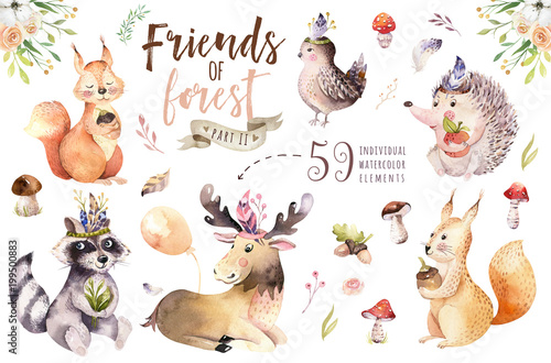 Wall mural Cute watercolor bohemian baby cartoon hedgehog, squirrel and moose animal for nursary, woodland isolated forest illustration for children. Bunnies animals.