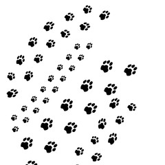 Cute dog steps black seamless brush strokes isolated on white. Animal foot prints, pet silhouette paw imprint trails. Decorative idea for pet clinics, stores.