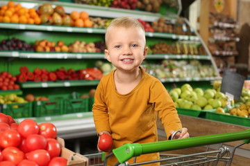Cute little boy choosing fresh tomatoes in supermarket