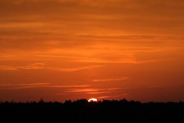 Sonnenaufgang über dem Wald an einem Tag im Herbst