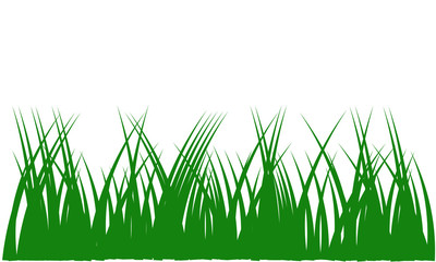 Green grass with copy space vector illustration