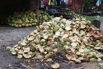 Husks of coconuts