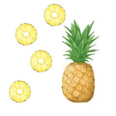 pineapple clip art digital tripical fruit