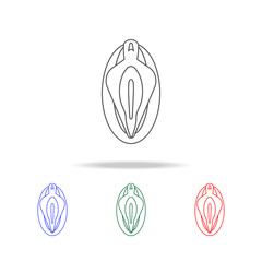 Vagina line  icon. Elements of human body part multi colored icons. Premium quality graphic design icon. Simple icon for websites, web design, mobile app, info graphics