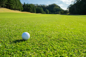 Golf Course where the turf is beautiful and Golf Ball on fairway. Golf is a sport to play on the turf