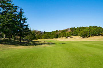 Golf Course where the turf is beautiful and green in Chiba Prefecture, Japan. Golf course with a rich green turf beautiful scenery.