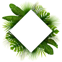 Tropical green leaves with white frame place for text isolated on white background