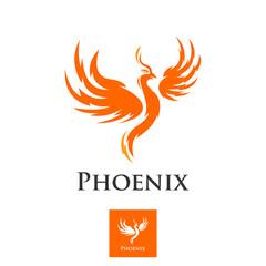 phoenix bird of heaven