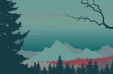 Coniferous forest in mountain landscape under night sky