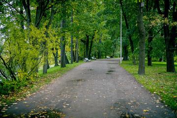 Alley in autumn Park.
