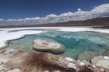 Hidden lagoon Baltinache (Lagunas escondidas Baltinache) Atacama Desert, Chile