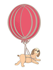 hot air balloon and puppy