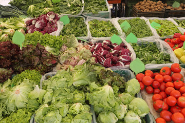 Leafy Greens Vegetables