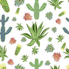 Cactus vector and flower backgraund print