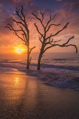 Scenic view of Botany Bay Beach at sunset