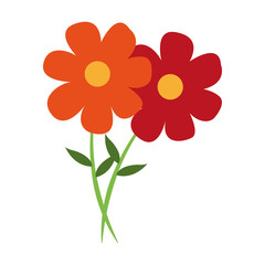 Beautiful flowers cartoon vector illustration graphic design