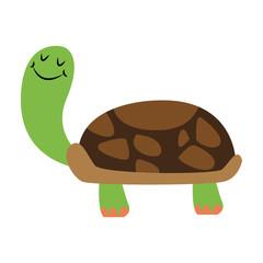 Funny turtle cartoon vector illustration graphic design