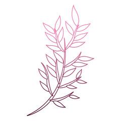 Bouquet of leaves cartoon on purple lines vector illustration