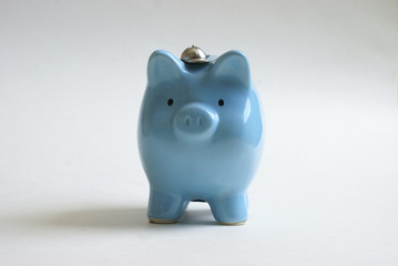 Baby Blue Pig Bank