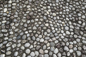 pebble stone in cement floor texture and seamless background