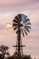 Windmill in the rose colored morning sunrise