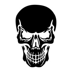 Black skull silhouette, on white background,