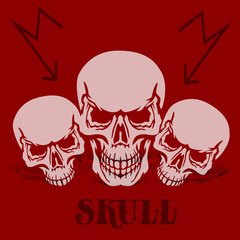 Banner on a red background.Three gray skulls, silhouette with shadow,