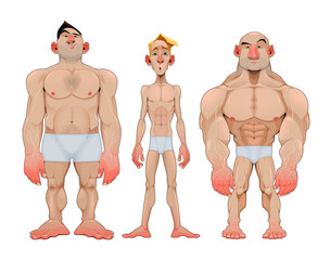 Three types of caricatural male anatomies