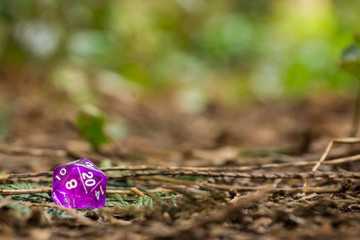 Polyhedral dice in a woodland environment