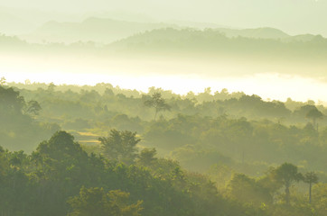 Beautiful Tropical Mountain mist in Rain Forest with Fog of Sumatra,  Aceh Besar, Aceh province-Indonesia