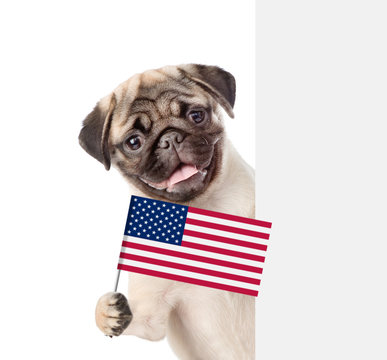 Puppy holding American flag in paw behind white banner. isolated on white background