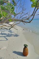 Pineapple and papaya on sandy beach