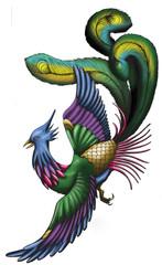 Chinese phoenix illustrarion