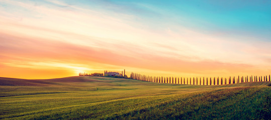 Poster Toscane Beautiful magical landscape with a field and a line of cypress in Tuscany, Italy at sunrise