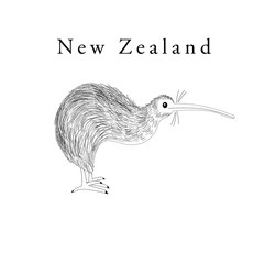 Vector graphics symbol of New Zealand bird Kiwi