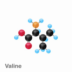 Molecular omposition and structure of Valine, Val, best for books and education