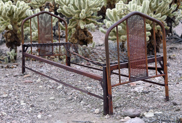 rusted bedstead in front of cholla plants