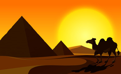 Pyramid and Camel with Desert Scene