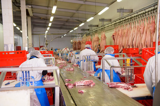 workers of pork meat manufacturing