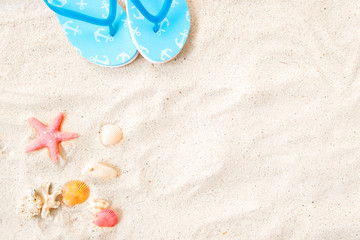 Beach background - top view of beach sand with shells, tarfish and slipper. summer background concept.