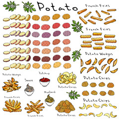Fast Food Set. Varieties of Potatoes of Different Colors. Potato Slices and Nightshade Leaves. Potato Wedges, French Fries, Corrugated Potato Chips, Wave Chip, Ketchup, Mustard, Mayo in a Bowl.