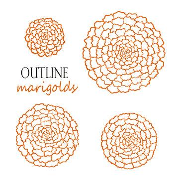 Set of four outline orange marigolds