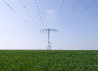 Power Lines: Overhead high voltage power line over a green field in Eastern Thuringia in April