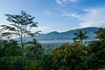Nature in the Borobudur temple are aof Yogyakarta